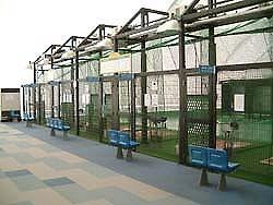 ニッケコルトンバッティングドーム