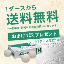 ナイガイ 軟式野球ボール M号